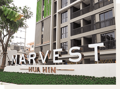 Marvest Huahin 1 bed apartment in city Hua Hin